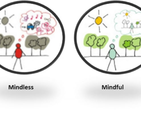 Mindful of Mindless?