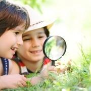 Stimuleer de nieuwsgierigheid